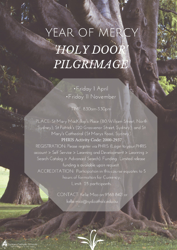 20160222-holy-door-flyer-img